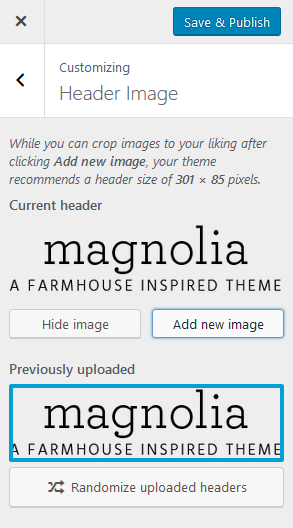 Meet Mag- A WordPress Theme for New Bloggers on a Budget
